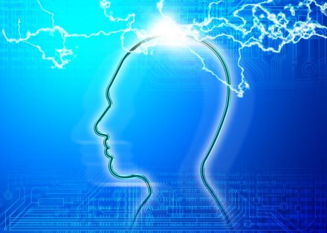 流動性知能 結晶性知能