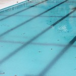 プール 転職サイト